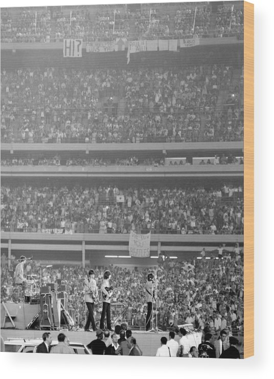 Crowd Wood Print featuring the photograph The Beatles At Shea Stadium, Our Mets by New York Daily News Archive