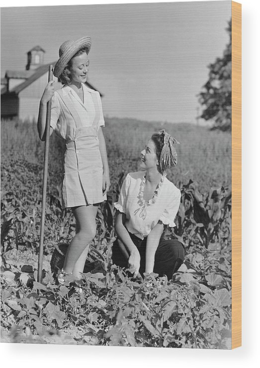 People Wood Print featuring the photograph Two Women Gardening In Field by George Marks