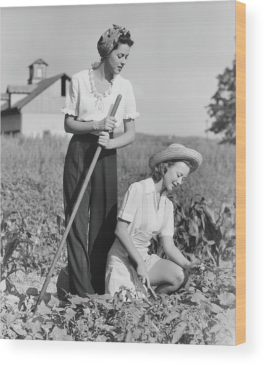 Straw Hat Wood Print featuring the photograph Two Women Working On Field, B&w by George Marks