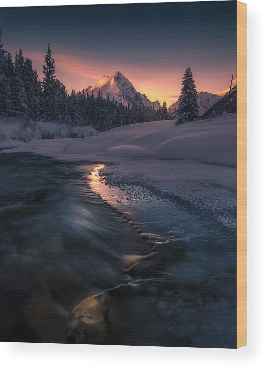 Canadian Wood Print featuring the photograph Where The Light Guides You by Simon Roppel
