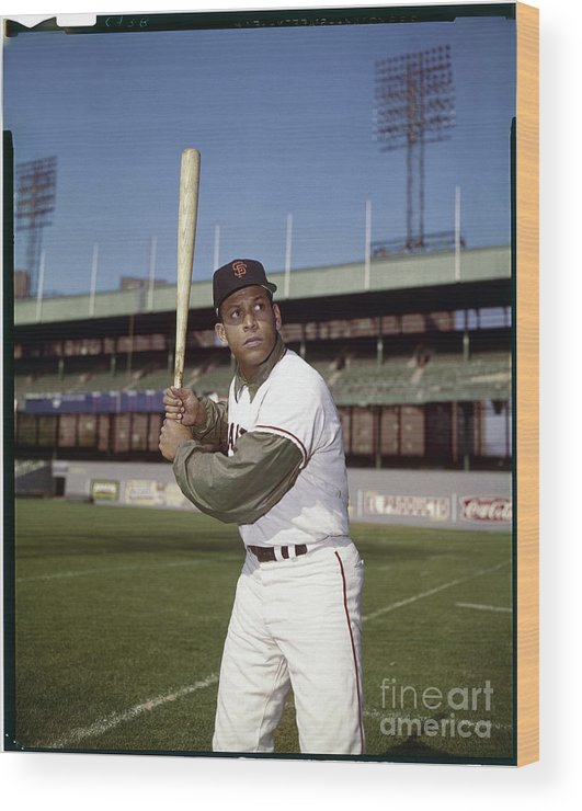 Sports Bat Wood Print featuring the photograph Orlando Cepeda by Louis Requena