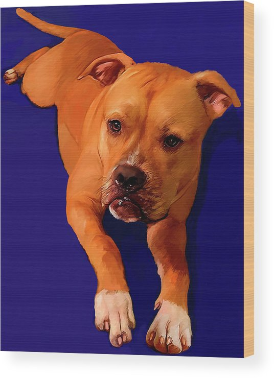 Boxer Wood Print featuring the painting Boxer Portrait by Portraits By NC