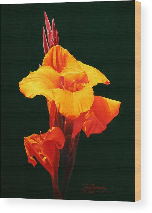 Floral Wood Print featuring the painting Orange Canna by Gary Hernandez
