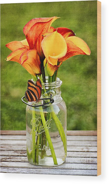 Mason Jar Wood Print featuring the photograph Calla's And The Butterfly by Darren Fisher