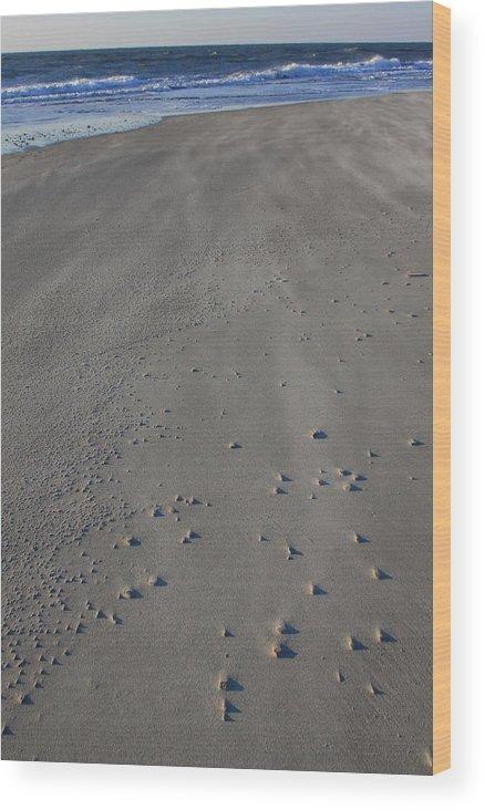 Folly Beach Wood Print featuring the photograph Folly Beach Sc by Mountains to the Sea Photo