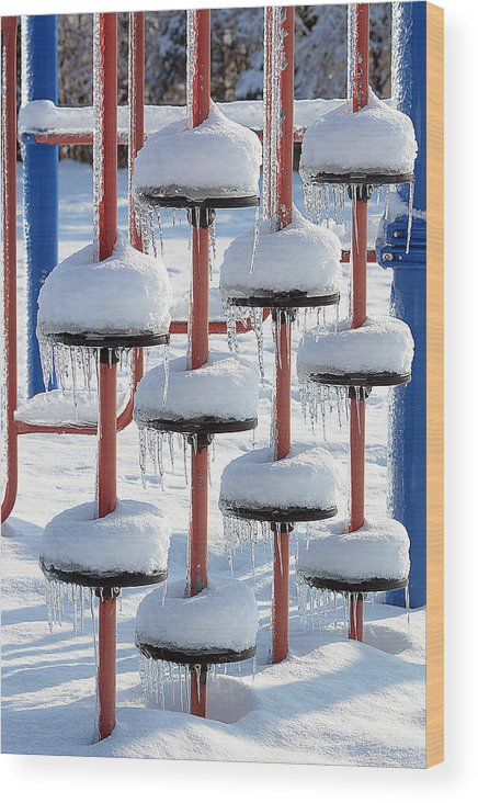 Ice Wood Print featuring the photograph Ice And Snow-5637 by Steve Somerville