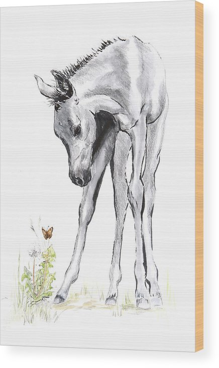 Horse Wood Print featuring the drawing Inquisitive Epona by Kathryn Dalziel