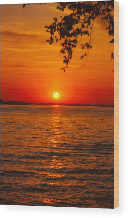 Sunset Wood Print featuring the photograph Saint Lawrence River Sunset IIi by Brian Lucia