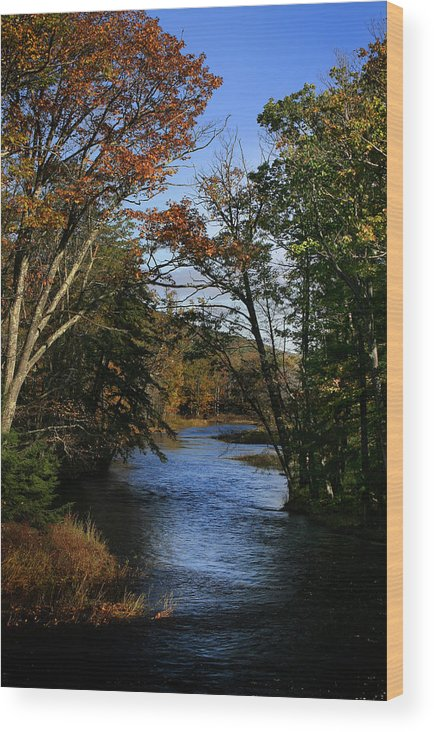 River Wood Print featuring the photograph Autumn 1 by Jesse Baker