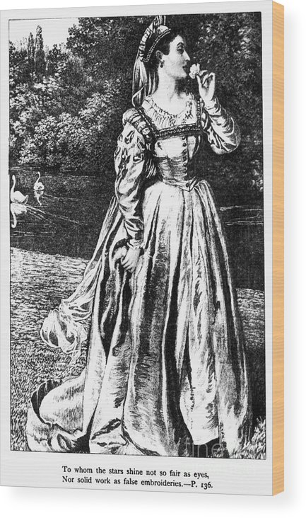 1633 Wood Print featuring the photograph Herbert: Vanity by Granger