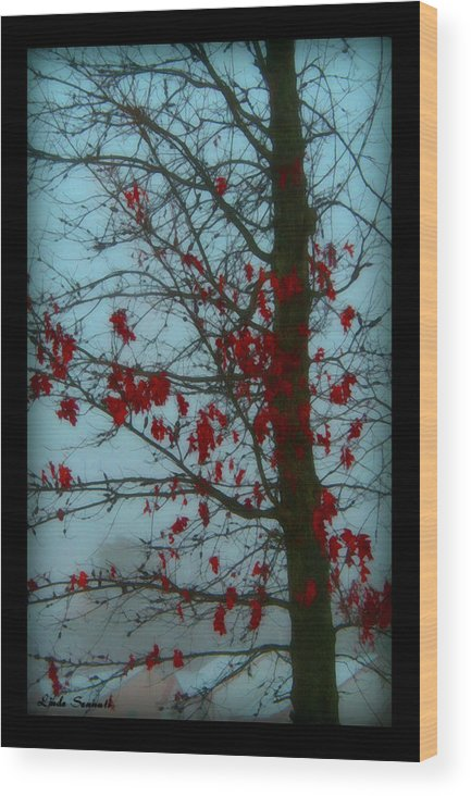 Tree Winter Nature Wood Print featuring the photograph Cold Day In Winter by Linda Sannuti