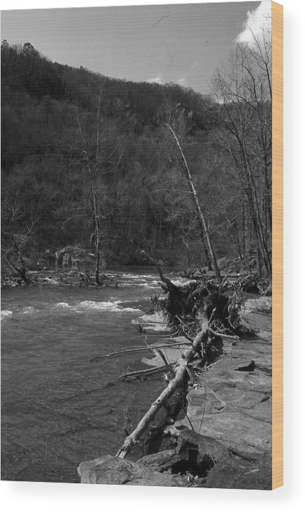 Wood Print featuring the photograph Long-pool-log-jam by Curtis J Neeley Jr