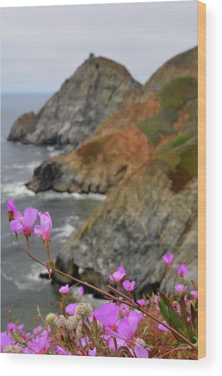 Nature Wood Print featuring the photograph A Blur Of A Certain Softness by Samuel Emole