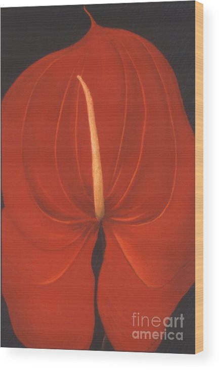 Anthurium Wood Print featuring the painting Anthurium by Mary Erbert