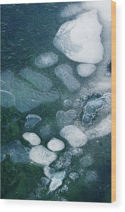 Ice Wood Print featuring the photograph Frosted Bubbles by Cate Franklyn