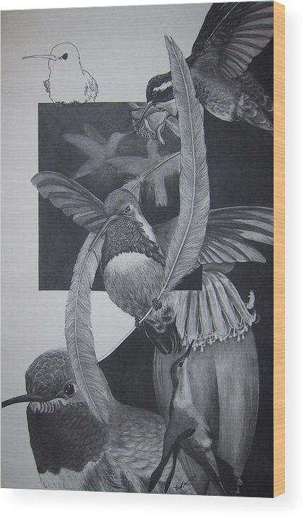 Hummingbird Wood Print featuring the drawing Humingbirds by Richard Ong