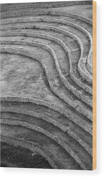 Moray Wood Print featuring the photograph Moray Lines by Marcus Best
