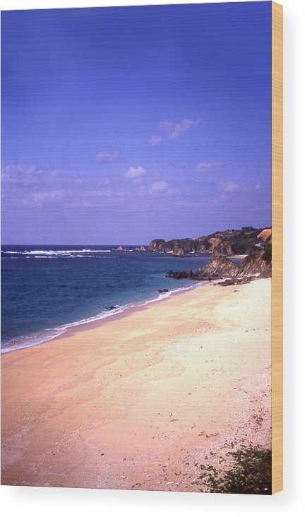 Okinawa Wood Print featuring the photograph Okinawa Beach 22 by Curtis J Neeley Jr