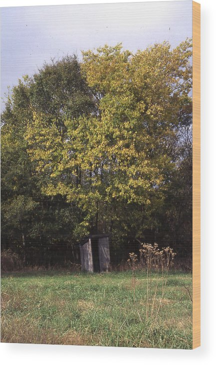 Wood Print featuring the photograph Outhouse4 by Curtis J Neeley Jr