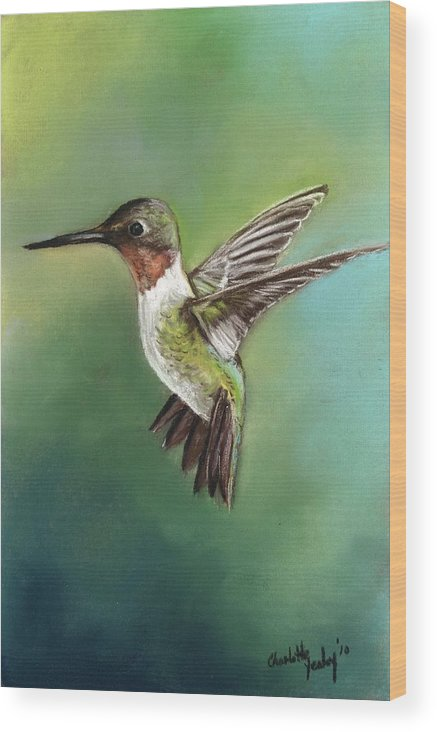 Bird Wood Print featuring the painting Ruby Throated Hummingbird by Charlotte Yealey