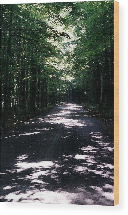 Forest Wood Print featuring the photograph Sun And Shadow Road In Summer Imp Wc by Lyle Crump