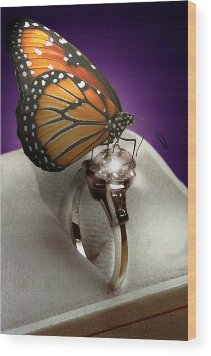 Fantasy Wood Print featuring the photograph The Butterfly And The Engagement Ring by Yuri Lev