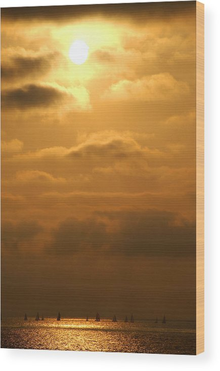 Sailing Wood Print featuring the photograph Thursday Evening Sail by Val Jolley