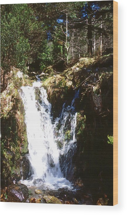 Forest Wood Print featuring the photograph Waterfall by Mike Bambridge