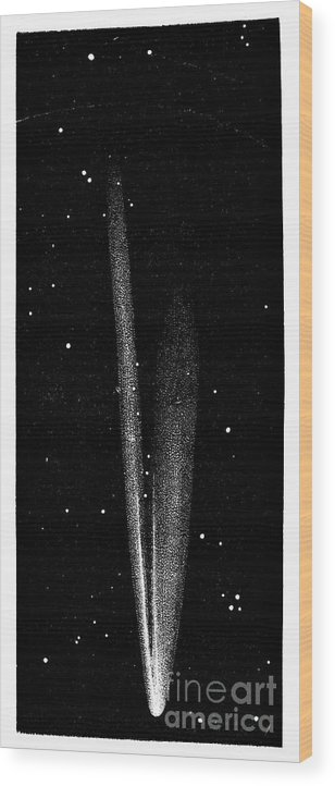 1861 Wood Print featuring the photograph Great Comet Of 1861 by Granger