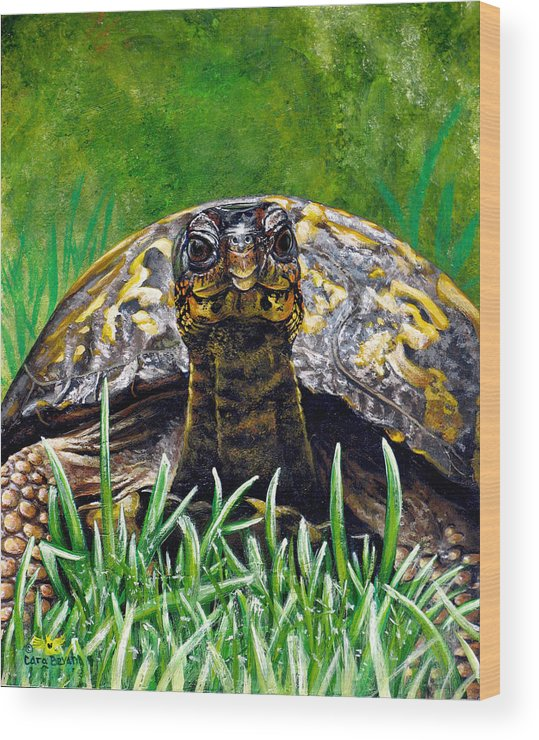 Turtle Wood Print featuring the painting Smile by Cara Bevan