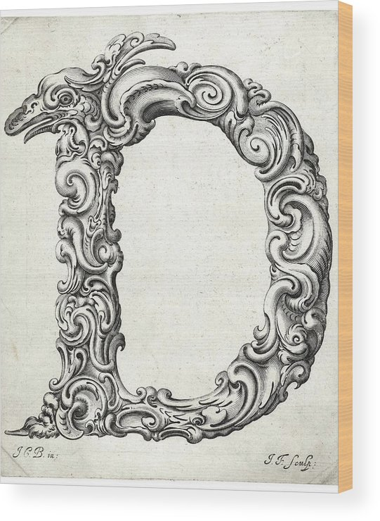 D Wood Print featuring the photograph Decorative Letter Type D 1650 by Georgia Fowler