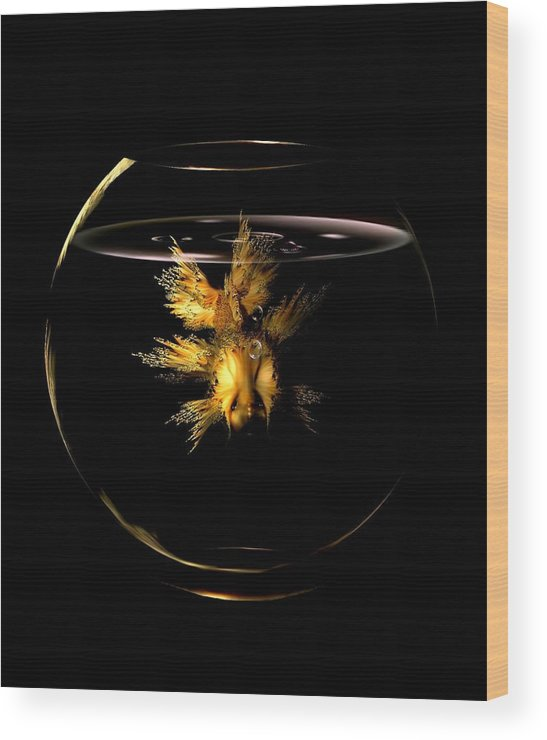 Gold Fish Wood Print featuring the digital art Golden Fish by Patricia Banks