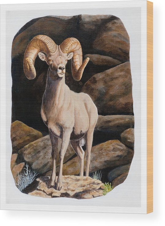 Nevada Wood Print featuring the painting Nevada Desert Bighorn by Darcy Tate