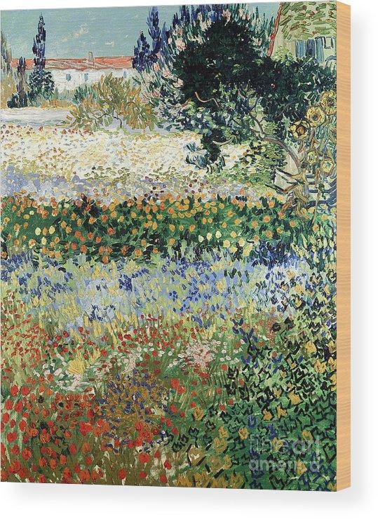 Garden In Bloom Wood Print featuring the painting Garden In Bloom by Vincent Van Gogh
