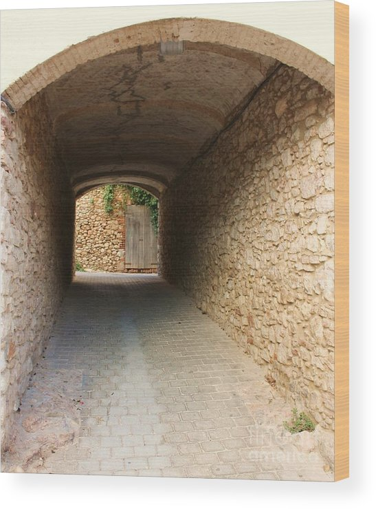 Alleyway Wood Print featuring the photograph Stoned Tunnel by Dennis Curry