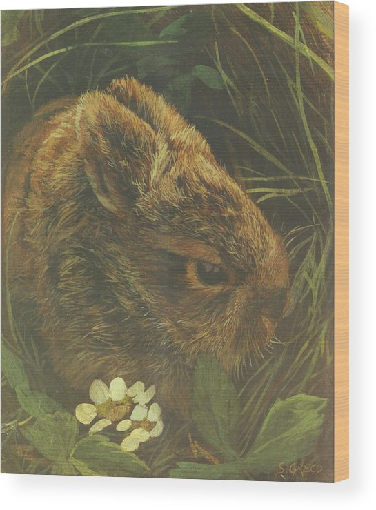 Wildlife Wood Print featuring the painting Cottontail Young by Steve Greco