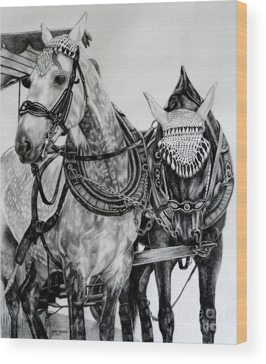 Horse Pencil Black White Germany Rothenburg Wood Print featuring the drawing 2 Horses Of Rothenburg 2000usd by Karen Bowden