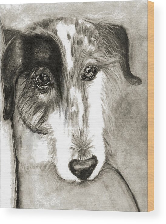 Dog Wood Print featuring the drawing Blue by Crystal Suppes