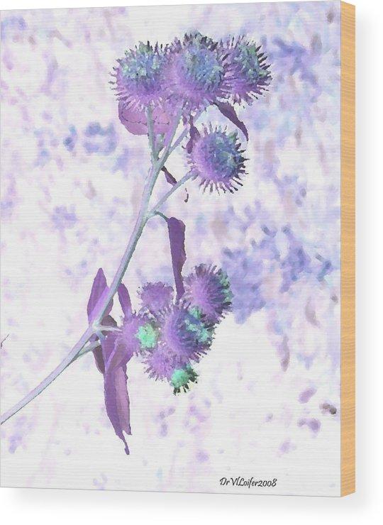 Plant Wood Print featuring the digital art Bush Of Burdock by Dr Loifer Vladimir