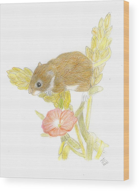 Mouse Wood Print featuring the drawing Mouse On The Corn by Jacqueline Essex