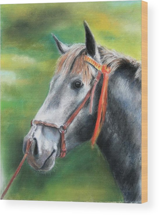 Horse Wood Print featuring the painting Pure Spanish by Ceci Watson