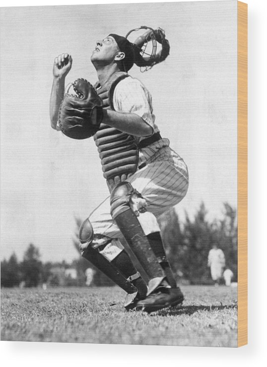Working Wood Print featuring the photograph Rookie Catcher Warren Buddy Rosar Works by New York Daily News Archive