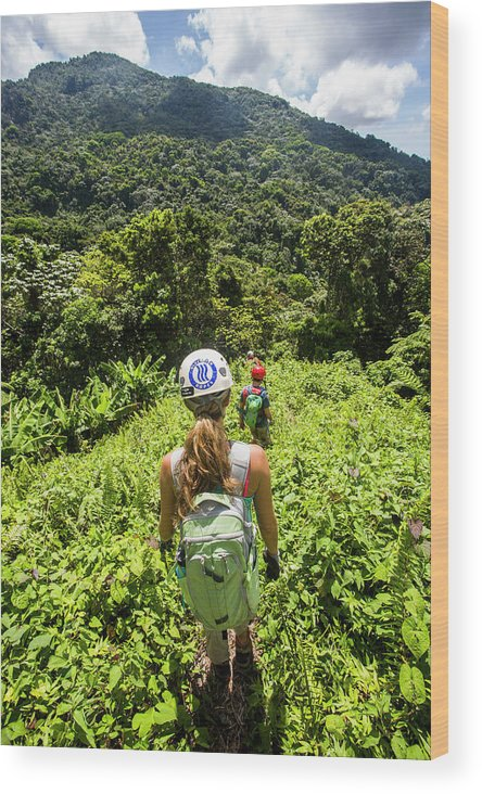 Outdoors Wood Print featuring the photograph A Young Woman Hikes Through The Jungles by Michael Hanson
