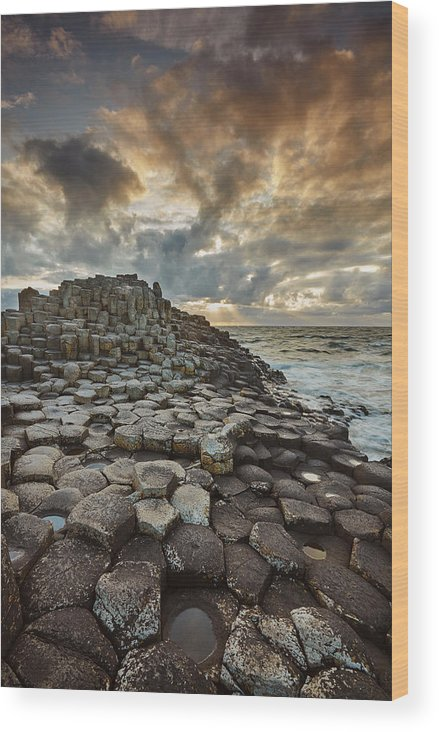 Giant's Causeway Wood Print featuring the photograph An Evening View Of The Giants Causeway by Nigel Hicks