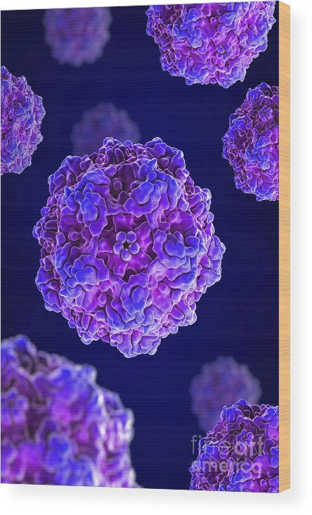 Pathogenic Virus Wood Print featuring the photograph Canine Parvovirus by Science Picture Co