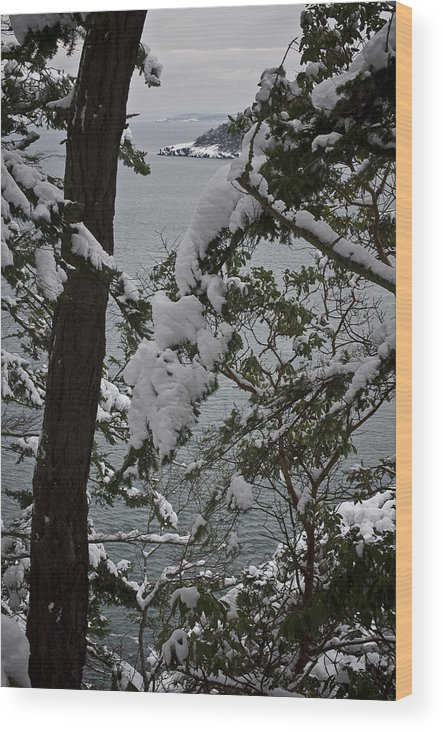 Deception Pass Wood Print featuring the photograph December's Point by Tom Trimbath