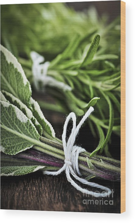 Herb Wood Print featuring the photograph Fresh Herbs In Bunches by Elena Elisseeva