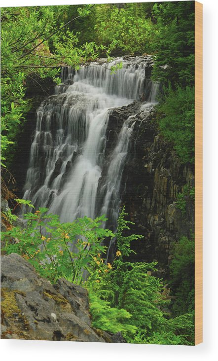 Butte-larose Wood Print featuring the photograph Galena Creek Falls, Mount by Michel Hersen