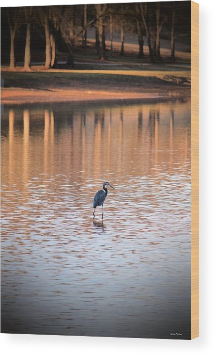 Sunset On The Lake Wood Print featuring the photograph Sunset On The Lake by Maria Urso
