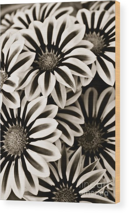 Flowers Wood Print featuring the photograph Together by Clare Bevan